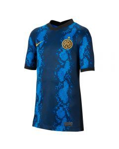 Nike Inter Milan Home Youth Soccer Jersey '21-'22 (Blue Spark/Truly Gold)
